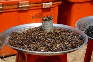Fried_Insects