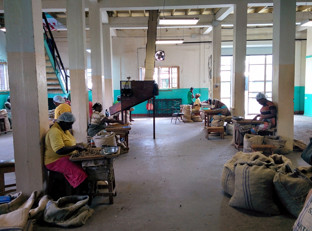 Nutmeg Processing Plant