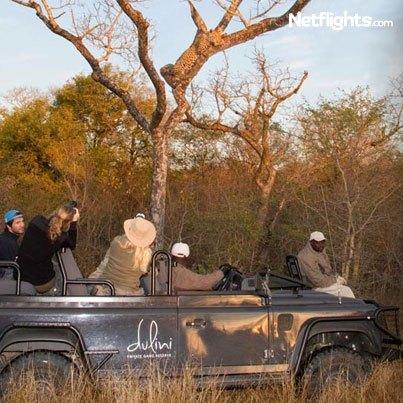 403x403_KrugerNationalPark-04