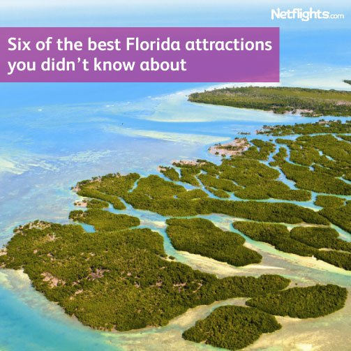Six of the best Florida attractions you didn't know about
