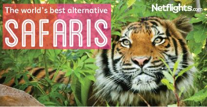 The-worlds-best-alternative-safaris