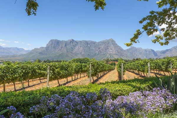 South Africa day trips