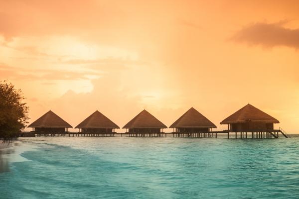 Bora Bora beach huts