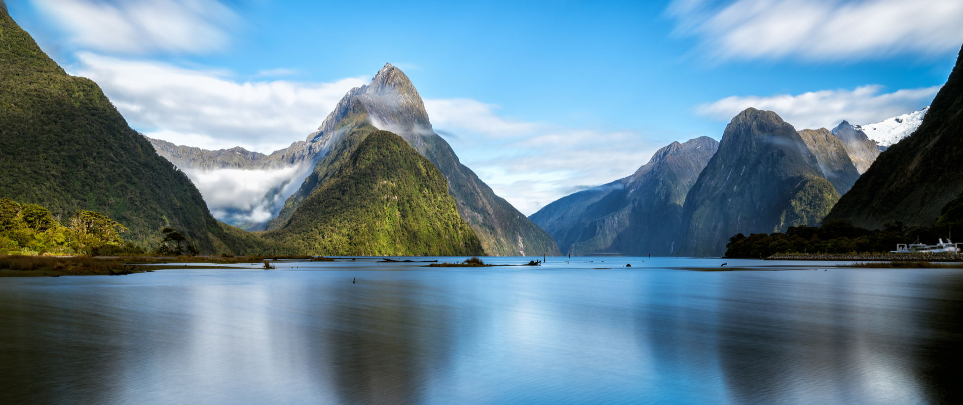 Spotlight on: New Zealand