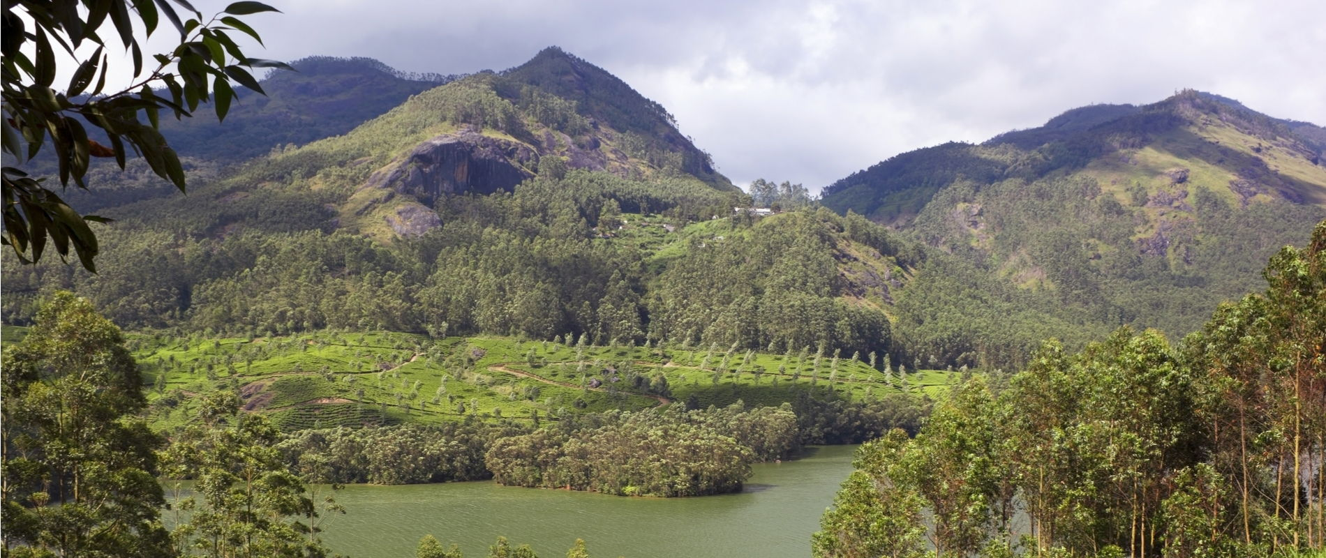 western ghats of south india