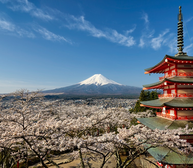 Mount Fuji with pagoda and cherry blossom, Japan