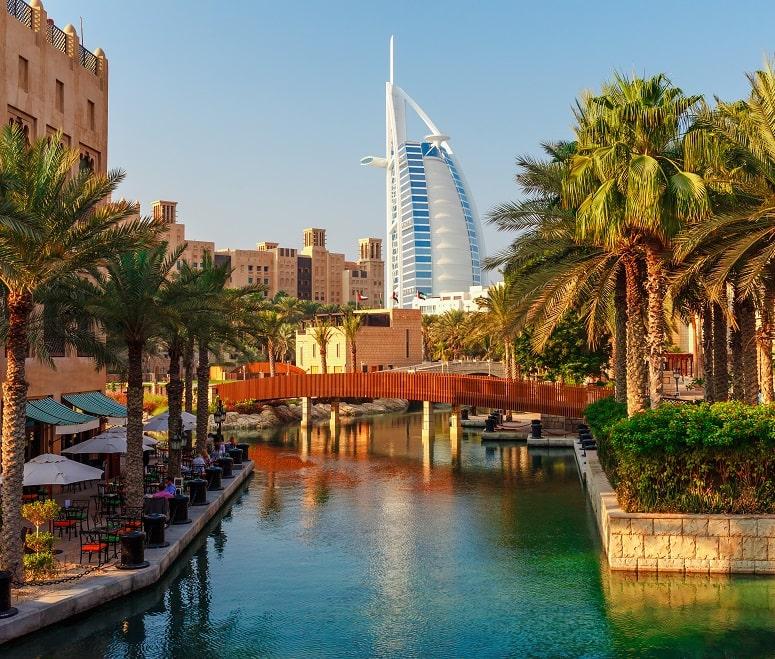 Dubai view of palm trees and Burj al Arab
