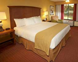 Rosen Inn at Pointe Orlando Accommodation