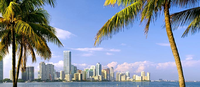 An image of a Miami skyline
