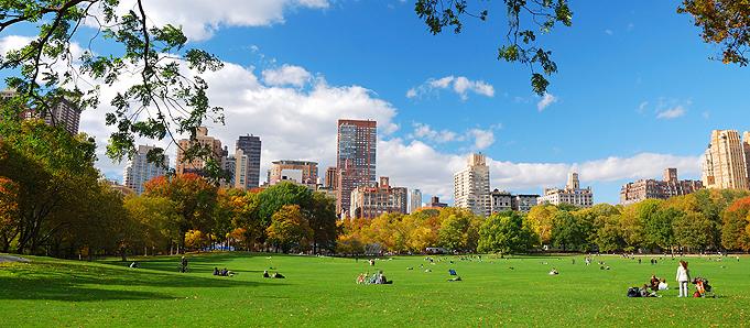 Картинки лето в нью йорке