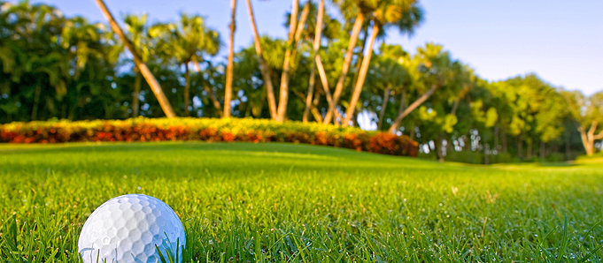 A golf ball on an Orlando golf course