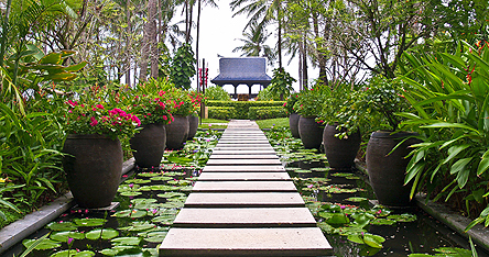 An image of a beautiful garden in Koh Samui