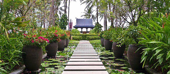 An image of a beautiful garden in Ko Samui