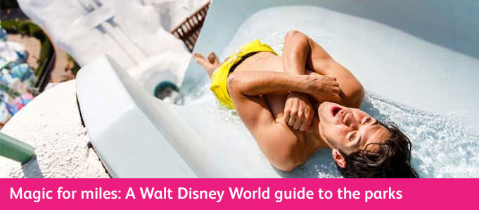 Walt Disney World Park Guide Typhoon