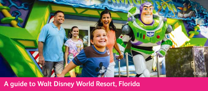 Walt Disney World Buzz Lightyear