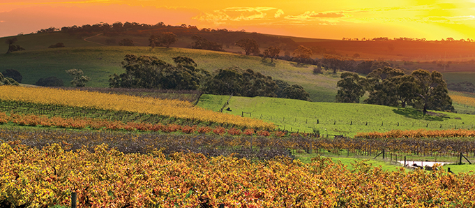 South Australia travel guide