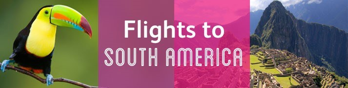 Flights To SA