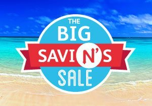 The Big SaviN's Sale
