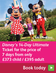 Disney 14 for 7 ticket