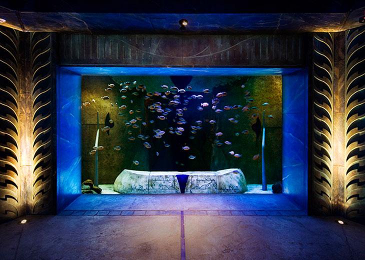 Atlantis The Palm 11