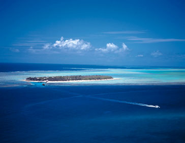 Heron Island, Great Barrier Reef