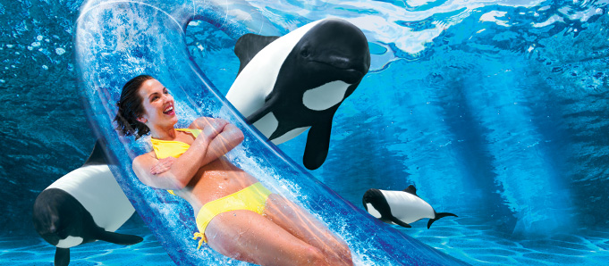 SeaWorld Parks & Entertainment